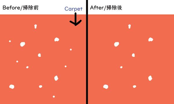 Carpet Dust