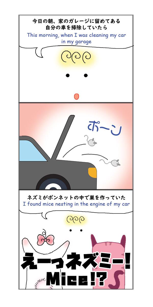 mice in the car