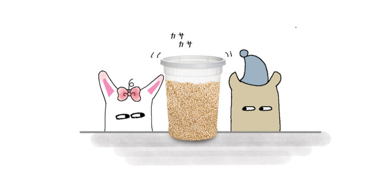 Sesame Seeds Header